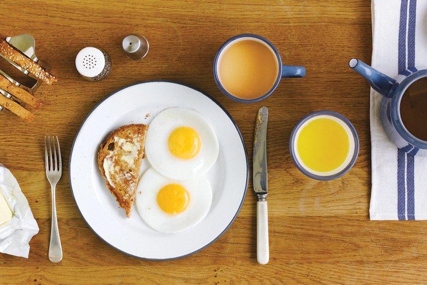 falcon-breakfast_eggs-rgb