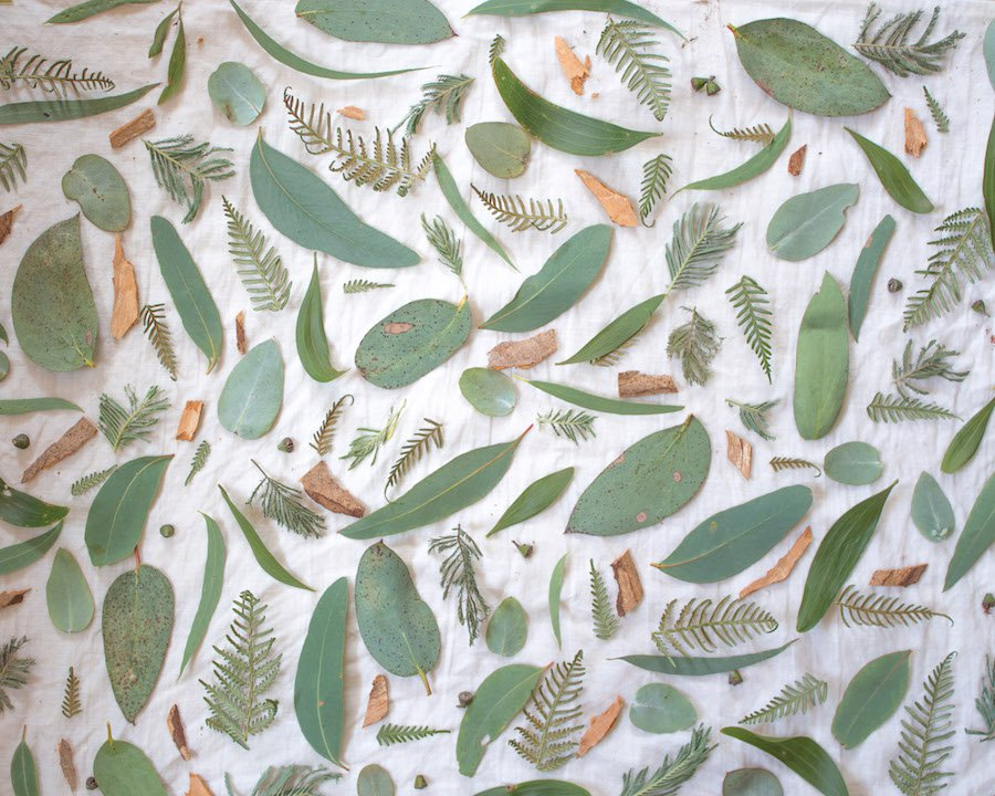 Natural dyeing on linen - native alpine flora by Belinda Evans - Alchemy
