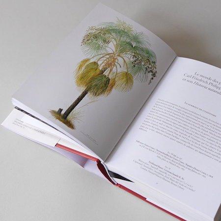 bookofpalms4_1024x1024-2