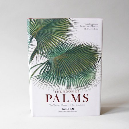 bookofpalms_edited-1_0d0abeb1-dc82-4294-a634-72720b3cc862_1024x1024